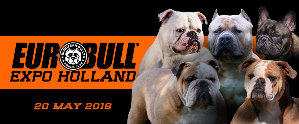 ebkc euro bull expo holland 2018 2018